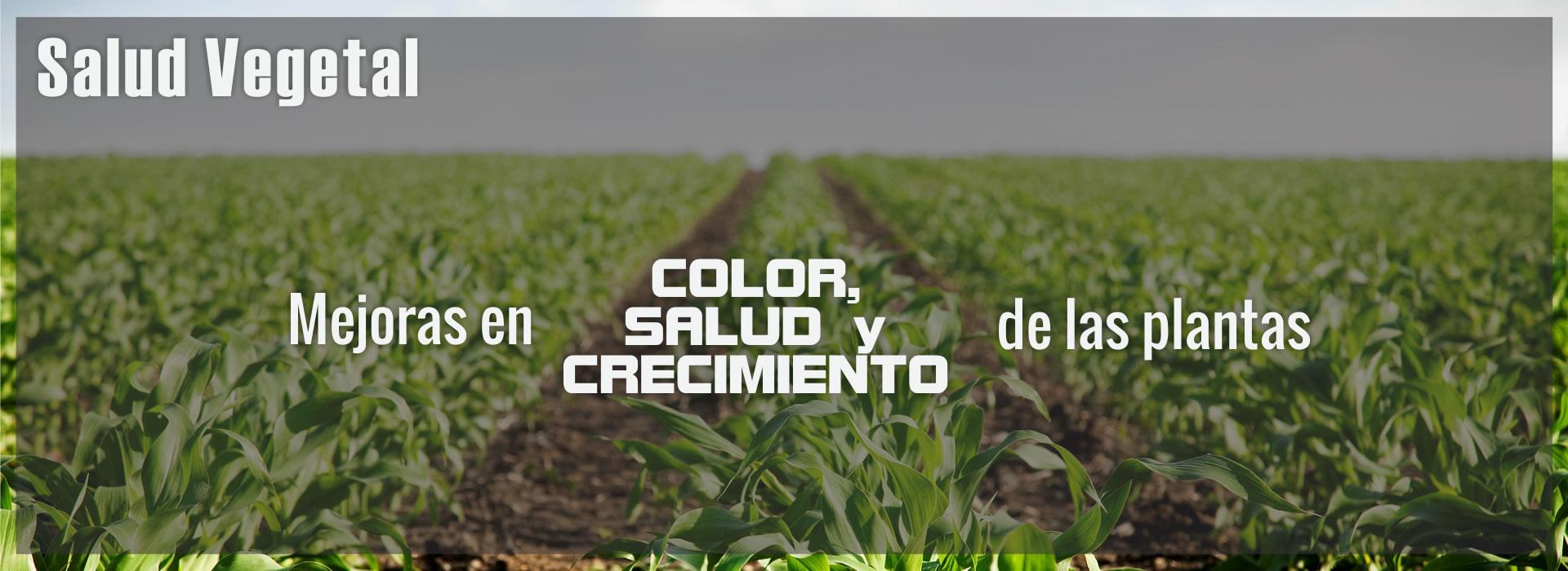 Resultados verdaderos, con mejoras en color, salud y crecimiento de las plantas